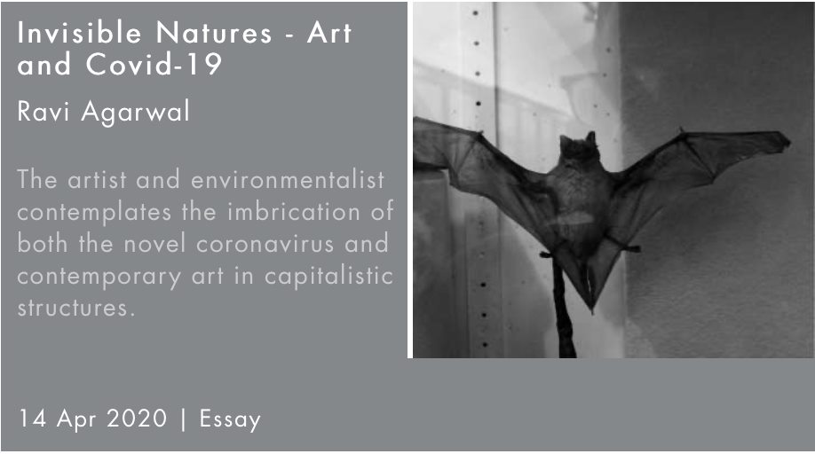 Invisible Natures – Art and Covid-19 — Ravi Agarwal for Critical Collective